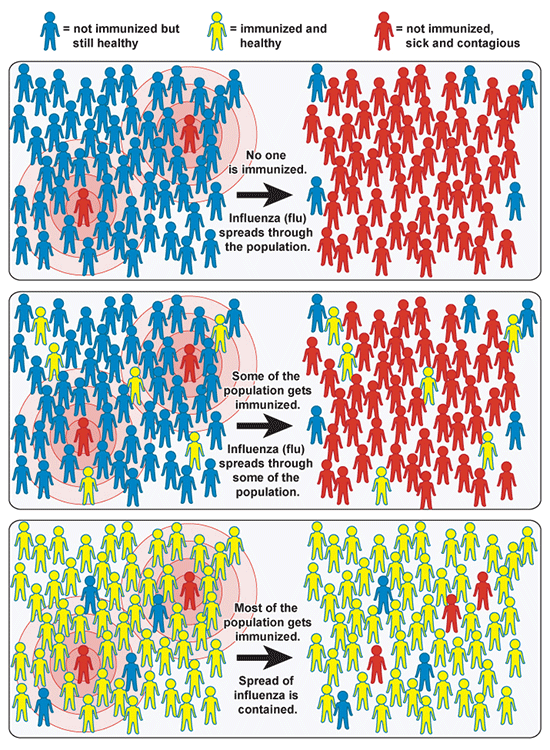 Community Immunity, by National Institute of Allergy and Infectious Diseases (NIAID) (On Immunity)