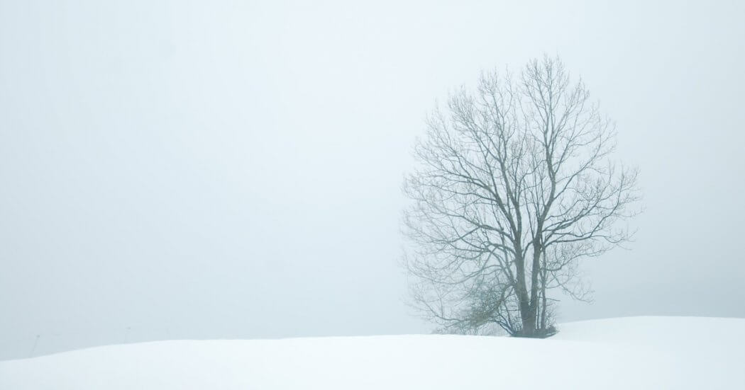 Snowflakes or Stoics? A Tale of Two Millennials